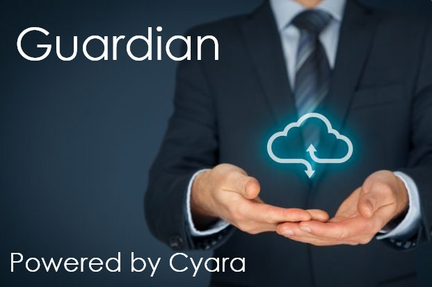 Guardian - Automated CX Monitoring logo